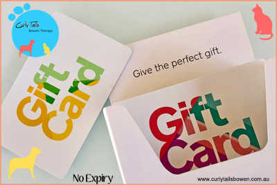 Bowen Therapy Gift Cards